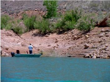 Fishing in Lake Powell