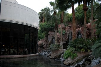 Family activites in Las Vegas