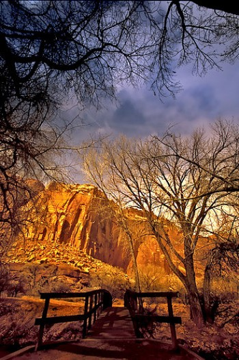 capitol reef national park lodging | capitol reef national park | capital reefs national park lodging